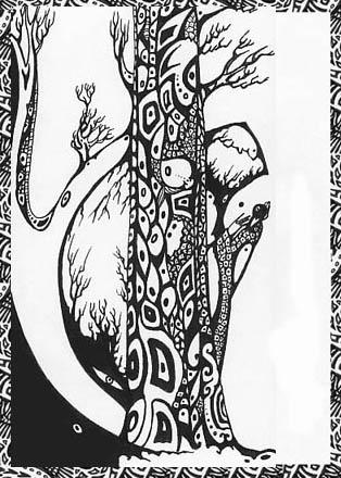 druid-fragment-frame