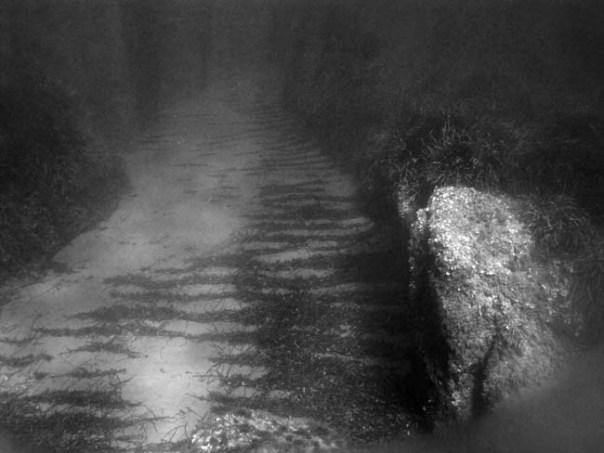 IMG_0525 подводная дорога