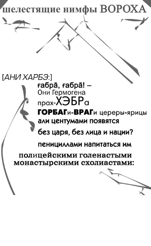 Nymphen-1.jpg