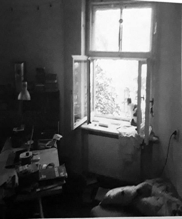 Stephen Ellis-p62-Morning Window